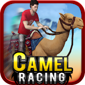 Camel Racing (3D Racing Game )