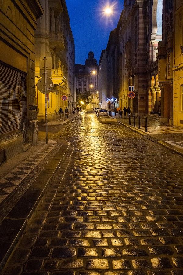 Prague at Night by Glenn Forrest - Buildings & Architecture Other Exteriors ( detail, street, night, prague, rain,  )