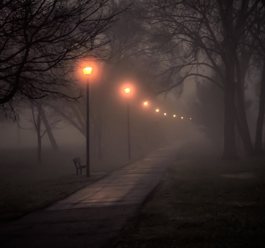 Foggy Morning Walk Along the River by Gary Hanson - City,  Street & Park  Street Scenes ( easter, lampost, mystical, walkway, morning, mist, river,  )