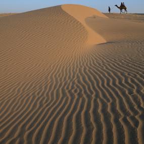 Sand dunes by Kaushik Dolui - Landscapes Deserts ( landscapes )