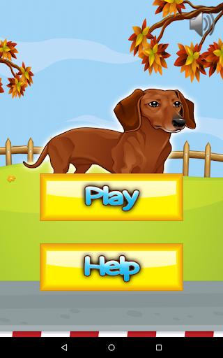 Smart Sausage Dog