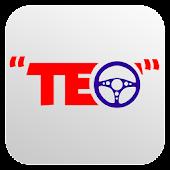 Scoala Teo-Chestionare Auto