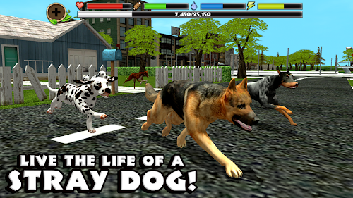 Stray Dog Simulator Screenshot
