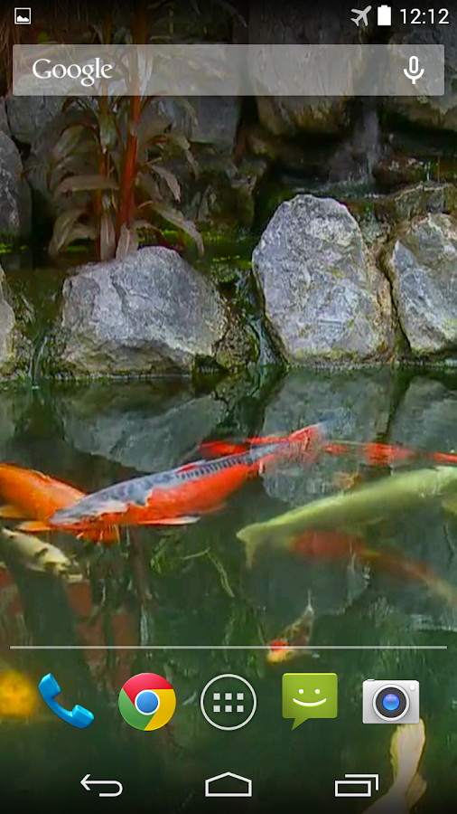Koi pond video live wallpaper android apps on google play for Koi fish pond live wallpaper