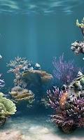 Screenshot of Fish Catch - Best Free Game