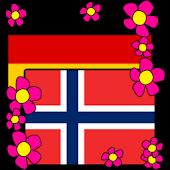 Norwegian-German Dictionary
