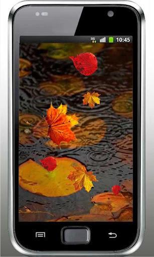 秋天的雨生活壁纸秋天雨忧郁和悲伤的飞。