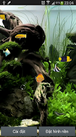 Screenshot of Aquarium Live Wallpaper
