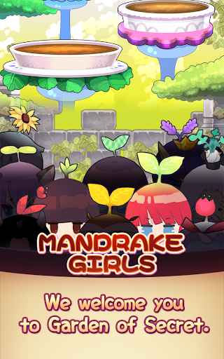 Mandrake Girls 1