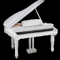 Piano Lesson Tutor 1.0.26