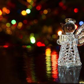 Christmas Angel by Mircea Bogdan - Public Holidays Christmas ( lights, angel, tree, christmas, crystal )