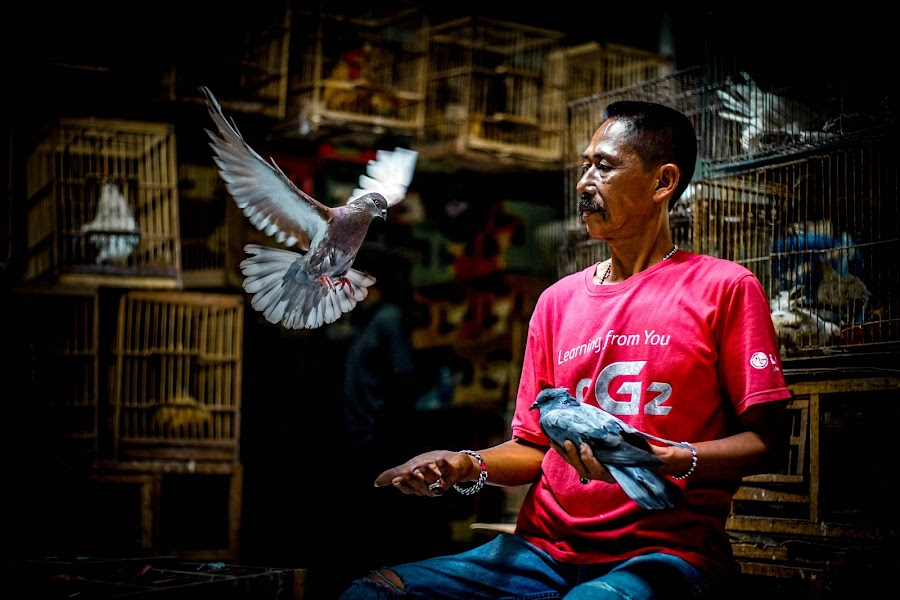 Learning From You How to Fly... by Markus Gunawan - People Street & Candids