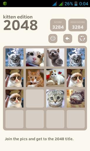 2048: Kitten Puzzles
