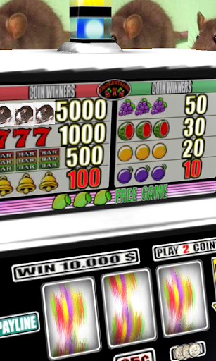 免費紙牌App|3D Rat Slots - Free|阿達玩APP