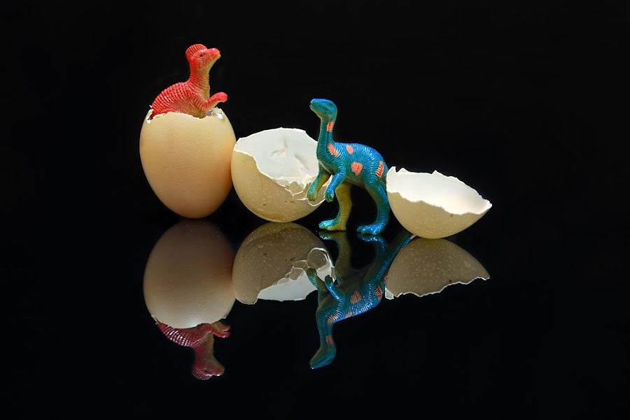 Jurassic Park by Kafoor Sammil - Artistic Objects Other Objects ( jurassic park, dinosaur )