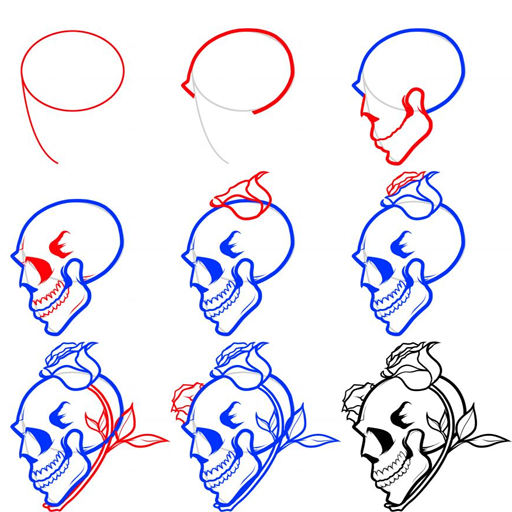 how to draw skuill