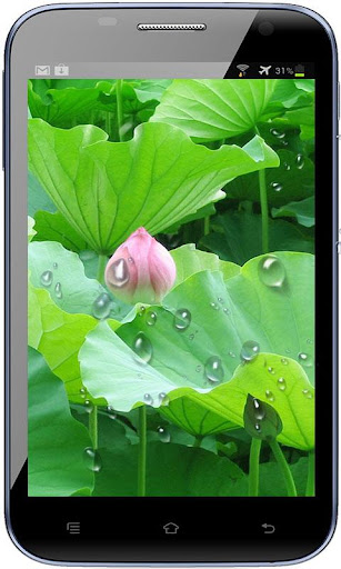 RainDrop Live Wallpaper Free