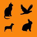 Animal Age icon
