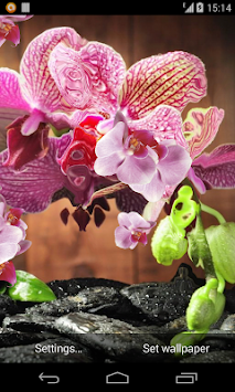 Pink Orchid 3d Live Wallpaper Apk Latest Version Download Free
