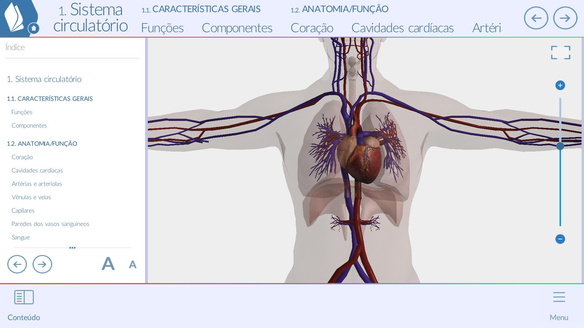 Atemberaubend 3d Anatomiemodelle Galerie - Anatomie Von Menschlichen ...