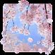 SakuraMoment