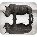 Black-White Animal Photography icon