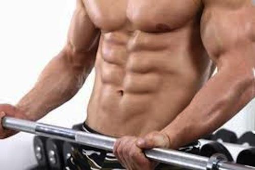 Muscle and Fitness Exercises