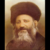 Rav kook daily quotes