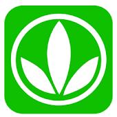 Salud Herbal