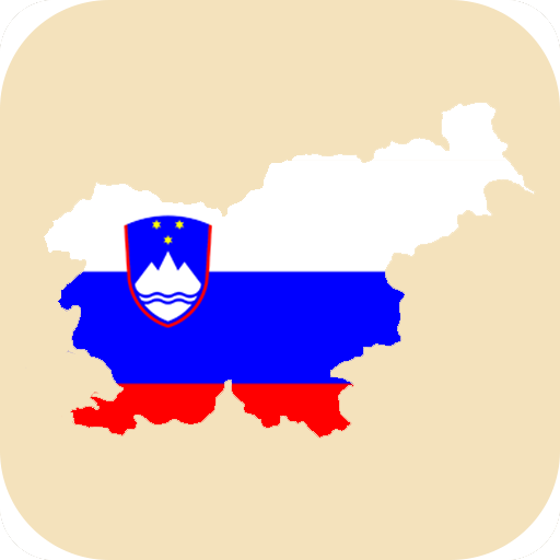 Mesta Slovenije