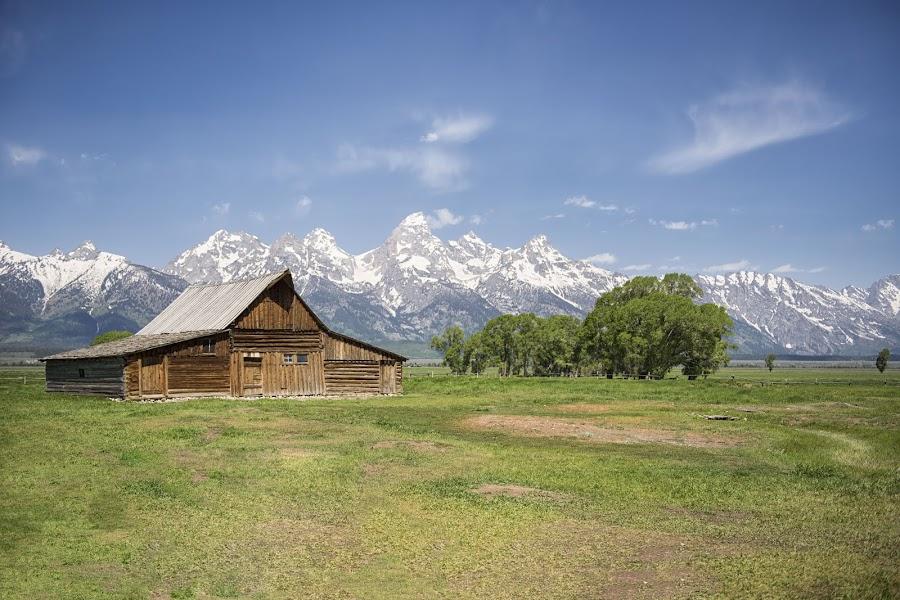 Moulton Barn by Stacy White - Landscapes Mountains & Hills ( mountains, barn, moulton, mormon row, tetons )