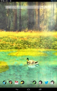 Ducks 3D Live Wallpaper FREE screenshot 8