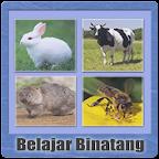 Belajar Membaca Binatang