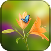 Flower Wallpaper for whatsapp