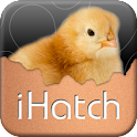 iHatch-Chickens icon