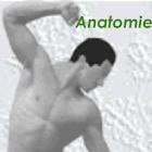 Physiokompendium Anatomie icon
